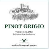 Maggiovini Villa Maggio Pinot Grigio Organic Grapes Italian Sicilian White Wine 750 mL