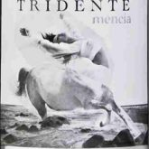 Bodegas Triton Tridente Mencia 2014 Spanish Red Wine 750mL
