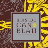 Celler Can Blau Mas de Can Blau Montsant 2012 Red Spanish Wine 750 mL